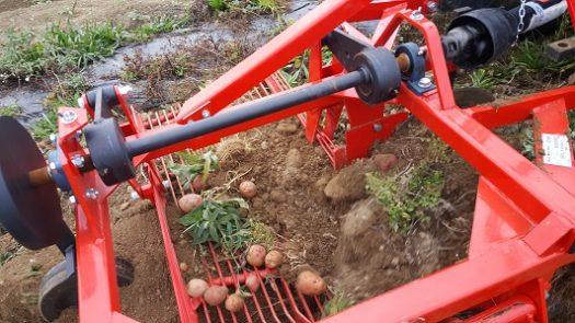 Edible Earth's DM100 Delmorino Side Discharge Potato Digger